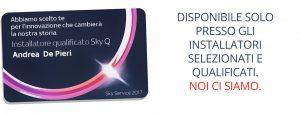 Sky Q Card